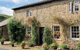 domestic-and-household-pest-control-in-yorkshire