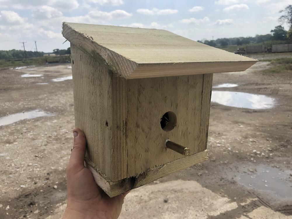 bird box conservation