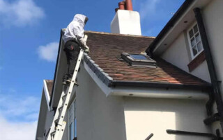 Wasp nest removal York